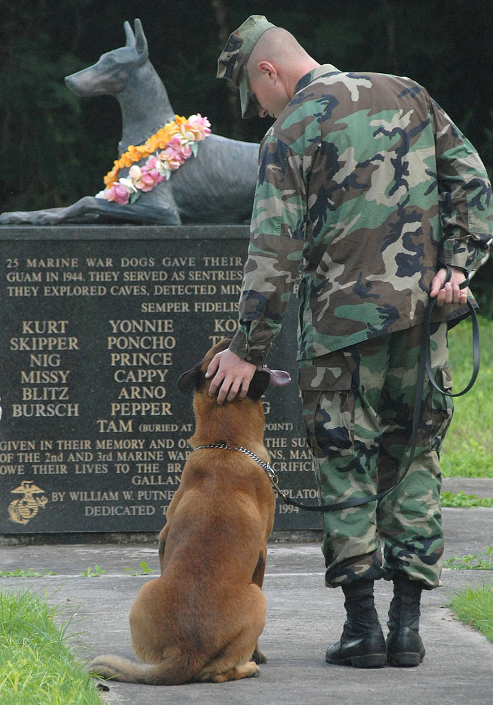War_Dog_Cemetery_Navel_Base_Guam (z Wikipedii)